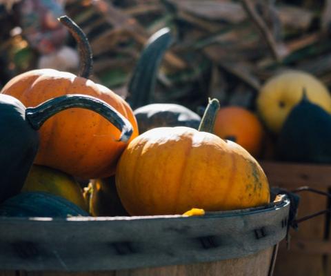 3 Thanksgiving Menus   Easy Thanksgiving dinner ideas